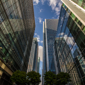 Looking Up by Corin Spinks - Buildings & Architecture Office Buildings & Hotels ( reflection, skyscraper, london, skyscrapers, canary wharf, glass, buildings, reflections, architecture )