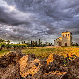 Anselmo Church and Vineyard by Becca McKinnon - Buildings & Architecture Places of Worship ( clouds, wine, bell, catholic, vineyard, vine, anselmo, winery )