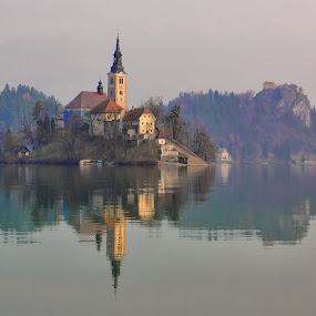Island Bled- Slovenia by Stane Gortnar - Buildings & Architecture Public & Historical ( church, slovenia, bled, castle, lake, island )