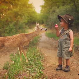 Z by Diána Barócsi - Babies & Children Toddlers ( outdoor, toddler, boy, animal, deer )