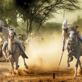 Team by Abdul Rehman - Sports & Fitness Other Sports ( sand, natural light, desert, horses, angry, dangerous, riders, warrior, horseback, rally, pakistan, adventure, multan, thrilling, dangerous sport, dust, sun light )
