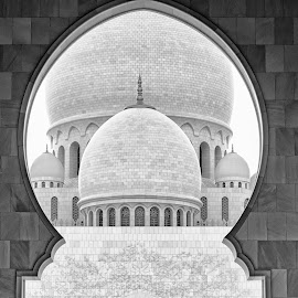 The Sheikh Zayed Grand Mosque by Navin Khianey - Buildings & Architecture Places of Worship ( religion, monochrome, blacknwhite, islam, mosque, uae, abu dhabi, architecture, middle east )