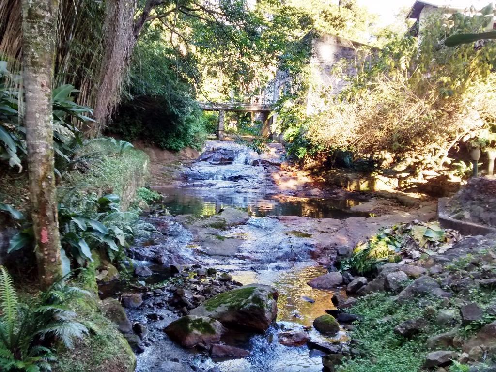 Terreno, Itacorubi, Florianópolis (TE0267) - Foto 7