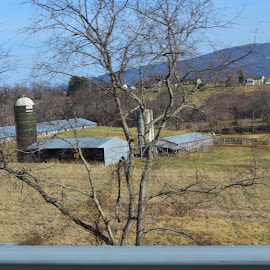 Silo by Sarah Burroughs-McGehee - Buildings & Architecture Other Exteriors ( farm, barn, grass, feed, silo,  )