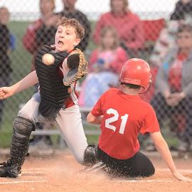 by Jimmy Rash - Sports & Fitness Baseball