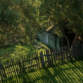 Early in the morning by Mihaela Ciulea - Buildings & Architecture Homes ( fence, yard, trees, house, morning, shadows )