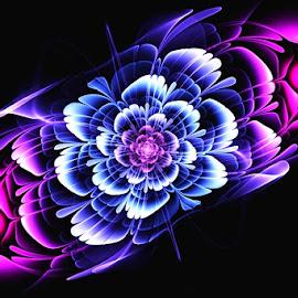 by Jasenka LV - Illustration Flowers & Nature