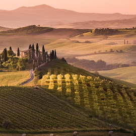 Val D'Orcia by Jim Harmer - Landscapes Prairies, Meadows & Fields ( farm, hill, tuscany, italia, val d'orcia, agriculture, italy, fields, san quirico d'orcia )