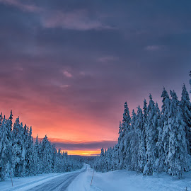 Lapland by Jari Johnsson - Landscapes Sunsets & Sunrises