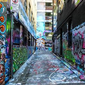 Hosiers Lane II by Bevlea Ross - City,  Street & Park  Street Scenes ( street art, graffitti, laneways, paint, tagger )