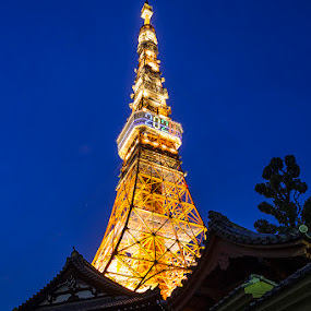 Japan for 2020 Olympic by Ketut Pujantara - Buildings & Architecture Public & Historical ( tower, japan, tokyo, tokyo tower )