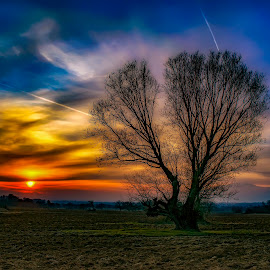 by Plamen Petkov - Landscapes Sunsets & Sunrises ( clouds, field )