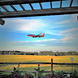 Airplane landing by Mary Gallo - Transportation Airplanes ( blue sky, airport watching, airplane landing, airplane, landscape, transportation,  )