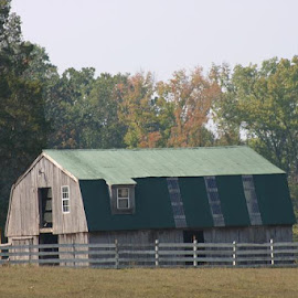 HORSE BARN  by Douglas Edgeworth - Buildings & Architecture Architectural Detail