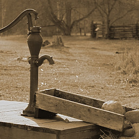 Pump by Kellie Prowse - Artistic Objects Antiques ( water, sepia, hand pump, midland, mi, chippewa nature center )