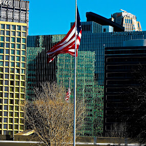 American Flags in Pittsburgh  by Patrick Connolly - City,  Street & Park  Skylines