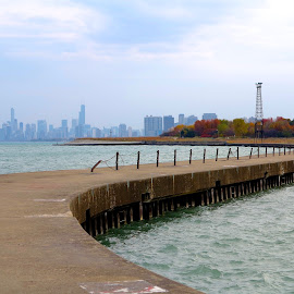 chicago by Fraya Replinger - City,  Street & Park  Skylines ( chicago skyline, harbor, autumn, fall, chicago )