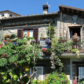 Country house between flowers by Patrizia Emiliani - Buildings & Architecture Homes ( house, flowers, italy, country, anguillara )