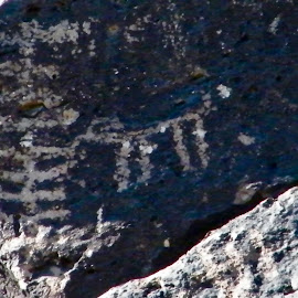 Petrographs ancient Rock Art by Donna Probasco - Novices Only Objects & Still Life