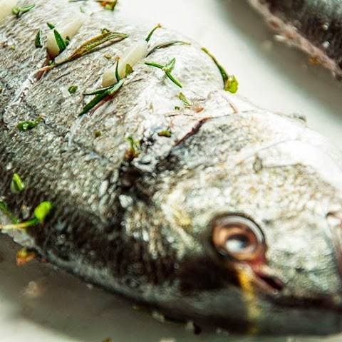 Marine Fish With Rosemary And Thyme