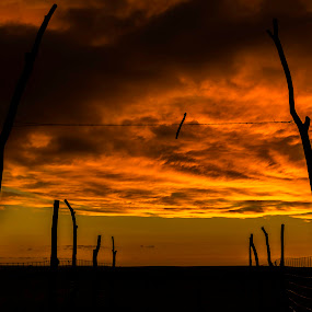 Hell's Gate by Christian Skilbeck - Landscapes Sunsets & Sunrises ( glowing sky, farm gate, silhouette, dramatic sky )