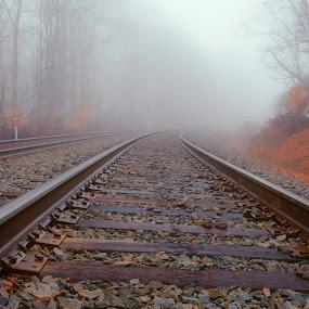 Into the Mist by Dan Girard - Transportation Trains ( train tracks, west springfield, fog, mist )