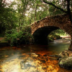 by Jon Harris - Buildings & Architecture Bridges & Suspended Structures
