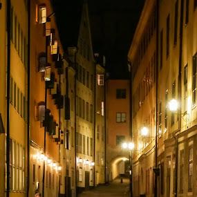 Gamla Stan (Stockholm) by Elena Lashneva - City,  Street & Park  Historic Districts