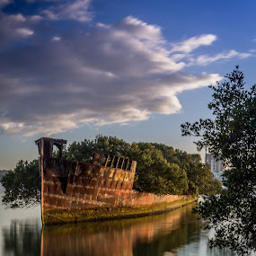 SS Ayrfield Shipwreck by Mandy Harvey - Transportation Boats ( homebush, shipwreck, australia, boat, wharf, sydney )