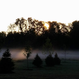 A thin line by Melissa Davis - Instagram & Mobile Android ( work, field, fog, cellphone, sunrise,  )