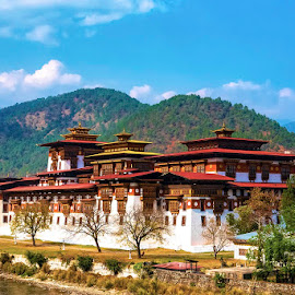 Punakha Dzong by Pravine Chester - Buildings & Architecture Public & Historical ( palace, places, photograph, historical building, building, architecture )