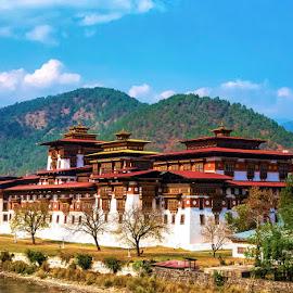 Punakha Dzong by Pravine Chester - Buildings & Architecture Public & Historical ( palace, places, photograph, historical building, building, architecture )