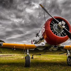 Texan by Matthew Savage - Transportation Airplanes ( t-6, naa, harvard, old aeroplane company, tyabb )