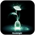App Good Night Gif Images apk for kindle fire