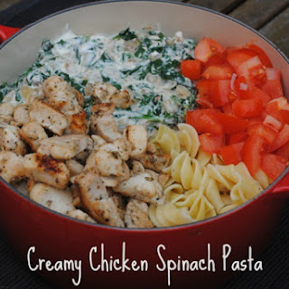 Spiral Pasta With Chicken Recipes