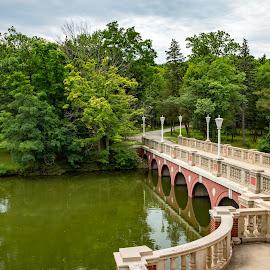 Seminary Bridge by John Williams - Buildings & Architecture Bridges & Suspended Structures ( mundelein seminary, st. mary's of the lake, bridge, seminary )