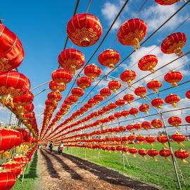 大紅燈籠高高掛,歡喜慶元宵 by Gary Lu - City,  Street & Park  City Parks ( city park )