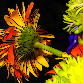 Rear View by Dave Walters - Digital Art Abstract ( colors, digital art, nature up close, flowers, sony hx400v )