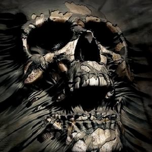 Skull Wallpapers - Android Apps on Google Play