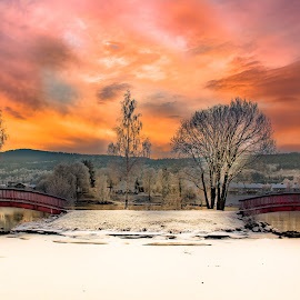 Fire in the sky by Geir Blom - Buildings & Architecture Bridges & Suspended Structures ( snow, sunset, tree, winter, bridge, bridges, water )
