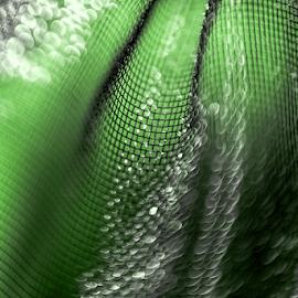 Mesh by Jackie Matthews - Abstract Macro ( macro, green, bokeh, vintage lens, pentacon 50, mesh )