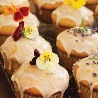 Yellow Summer Squash Dessert Recipes
