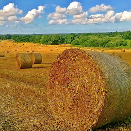 Summer games  by Ciprian Apetrei - Instagram & Mobile Other ( clouds, mobile photos, summer, hay rolls, brittany )