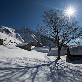 Camminare per me significa entrare nella natura. Ed è per questo che cammino lentamente, non corro quasi mai. La Natura per me non è un campo da ginnastica. Io vado per vedere, per sentire, con tutti i miei sensi. Così il mio spirito entra negli alberi, nel prato, nei fiori. Le alte montagne sono per me un sentimento.(Reinhold Messner) by Sabina Lombardo-Salmina - Landscapes Mountains & Hills ( mountains, sky, winter, mountain, tree, blue, beautiful, snow, switzerland, sun, alps )