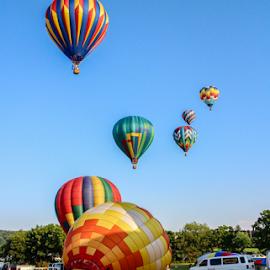 Mass Balloon Ascension by Dave Dabour - Transportation Other ( warren county farmers fair, summer, hot air balloons, balloons, balloon launch )