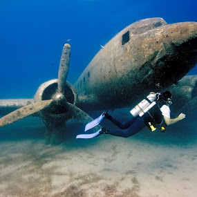Dakota Underwater by Rico Besserdich - Transportation Airplanes ( explore, diver, dakota, underwater, wreck, airplane, sea, ocean, swimming, aviation, plane, diving, underwaterphotograph )