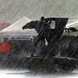 It's wet out there by John Davies - Landscapes Weather ( horseracing, weather, ffoslas, rain )