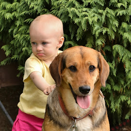 Patient dog by Pavel Vysoglad - Babies & Children Babies