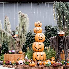 Halloween on the run by Lye Danny - Public Holidays Halloween