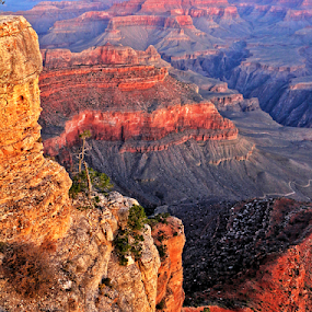 Sunrise over the Grand Canyon by Jerry Ehlers - Landscapes Mountains & Hills ( sunrise, grand canyon )